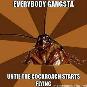 everybody_gansta