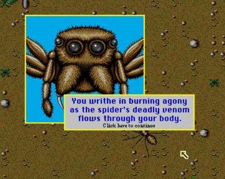 SimAnt_spider