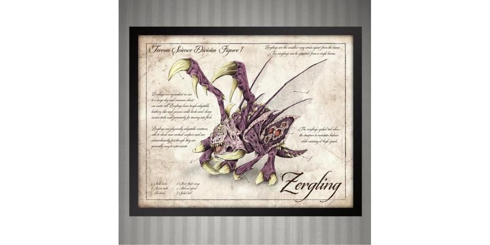 Starcraft_Zergling_Scientific_Illustration_Print