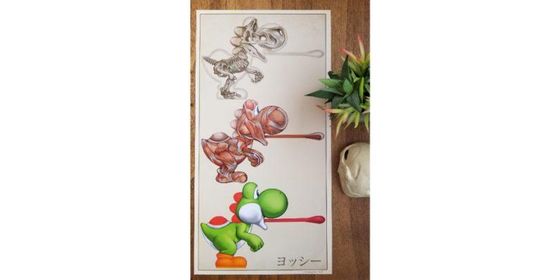 Yoshi_Anatomy_Poster_Super_Mario