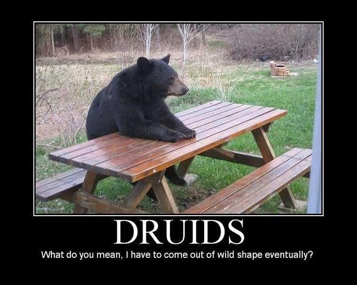DND_Druid_meme